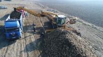 KAMYONCULAR - Pancar Üreticisinin Verimli Toprağı Artık Tarlada Kalıyor