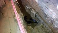 KOCABAŞ - Şişli'de BEDAŞ kazısında kemik parçalarına rastlandı