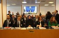 ŞİDDET MAĞDURU - '137 Kadın Konuk Evinde 3 Bin 444 Şiddet Mağduru Var'