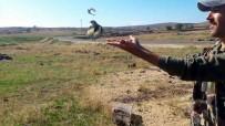 Avcılar, Suriyelilerin Yakaladığı Saka Kuşunu Doğaya Bıraktı