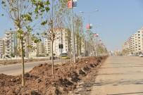 ÇITLEMBIK - Büyükşehir, Diyarbakır'ı Ağaçlandırıyor
