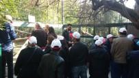 ENGELLİ VATANDAŞ - Engellilerin Hayvanat Bahçesi Keyfi