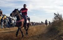 ÖMER ŞAHIN - Rahvan Atlar Nazilli'de Yarıştı