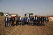 KOZLUCA - Başkan Tahmazoğlu, Çiftçilerle Tohum Ekti