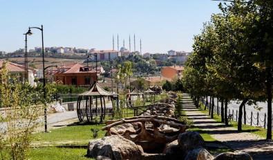 Çevreci Projeyle 139 Ağaç Kesilmekten Kurtarıldı