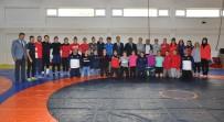 MUSA AYDıN - Kadın Güreşçiler Zirve Peşinde