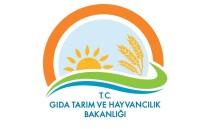 TAKVİYE EDİCİ GIDA - Bakanlıktan 'Takviye Edici Gıda' Açıklaması