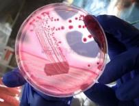 LABORATUVAR - Gen tedavisinde yeni bir yöntem deneniyor