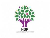 MEHMET ALİ ASLAN - HDP'li 10 milletvekilinin davasına 'yetkisizlik' kararı