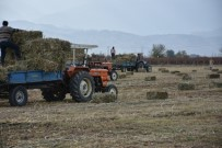 GÖKHAN KARAÇOBAN - Alaşehir Belediyesinden Üreticiye 150 Ton Ücretsiz Yem Desteği