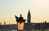 TOPUKLU AYAKKABı - Avrupa Ülkelerinde Bu Kurallara Dikkat