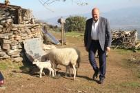 KEÇİ - Başkan Ertürk, Çobanları 1300 Rakımda Ziyaret Etti