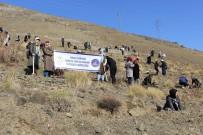 GENÇLİK VE SPOR BAKANLIĞI - Erzincan'da Her KYK'lı Bir Fidan Dikti