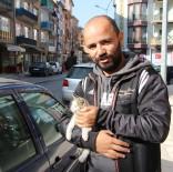 İTFAİYECİLER - Tokat'ta Kedi Kurtarma Operasyonu