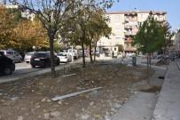 CAMİİ - Yarhasanlar Mahallesinde Park Alanı Yenileniyor