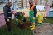 İLKBAHAR - Yeşillendirme Çalışmaları Sürüyor