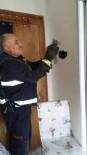 YAVRU KEDİ - Havalandırma  Boşluğuna Sıkışan Kedi Kurtarıldı