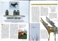 DÜZCE ÜNİVERSİTESİ - Öğretim Üyesinin Sergiler Konulu Yazısı Dergide Yayımlandı