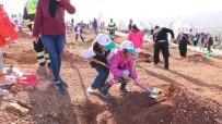 FİDAN DİKİM TÖRENİ - Şehitkamil'e Yeni Bir Orman Kazandırıldı