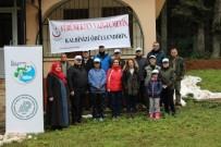 İL SAĞLıK MÜDÜRLÜĞÜ - Bartın'da 'Sağlıklı Yaşam İçin Tabiat Yürüyüşü' Yapıldı