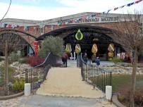 TİCARET BAKANLIĞI - Urla'da Zeytinyağı Müzesi Açıldı