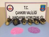 UYUŞTURUCU TACİRLERİ - Uyuşturucu Tacirleri Sakarya'dan Düğmeye Basılan Operasyonla Çankırı'da Yakalandı