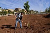 AHMET ARİF - Ahmed Arif Parkı Tamamlanıyor