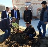 Akkuş'ta 72 Caminin Bahçesi Ağaçlandırıldı