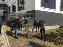 ÜLKÜCÜ - AÜ'de Öğrenciler Fidan Dikti
