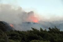 ŞİDDETLİ RÜZGAR - Datça'da Yangın Söndürüldü Açıklaması 1 Gözaltı Var