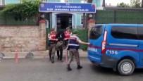 SAĞLIK RAPORU - Jandarma Ekipleri 50 Ayrı Suçtan Kaydı Bulunan Umut Tacirini Yakaladı