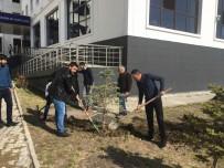 ÜLKÜCÜ - Ülkü Ocakları Şehit Fırat Çakıroğlu Anısına Ağaç Dikti