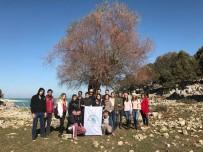 YEŞILDAĞ - Beyşehir'de Üniversite Öğrencileri Adada Kamp Yaptı