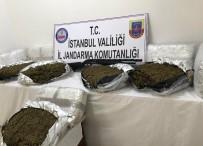 İL JANDARMA KOMUTANLIĞI - Jandarmadan Lüks Rezidansa Uyuşturucu Baskını