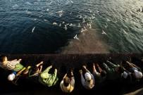 MARMARA DENIZI - Marmara Denizi Masaya Yatırılacak