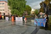 TÜRK KÜLTÜRÜ - Söke'de Çocuk Hakları Günü Kutlandı
