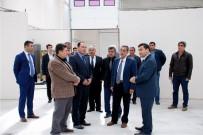 AHMET GAZI KAYA - Vali Kalkancı Tarımsal Alandaki Ekonomik Yatırımları İnceledi