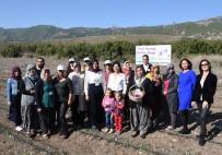 GENÇ NÜFUS - ABC Deterjan'dan Sosyal Sorumluluk Kampanyası Açıklaması 'ABC İle Yerli Yerinde'