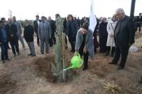ADALET KOMİSYONU - Aksaray'da 'Gönül Elçileri' Projesi Kapsamında Fidan Dikimi Yapıldı