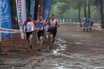 KOCADERE - Darıcalı Milli Atlet Balkan Şampiyonu Oldu