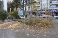 SAĞANAK YAĞMUR - Fırtınanın Devirdiği Ağaç Otomobilin Üzerine Düştü
