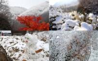 KISA MESAFE - Güney Kore Kış Olimpiyatları'na Hazır