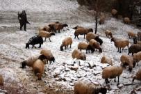 KEÇİ - Kar Yağışından Etkilenen Koyun Sürüsü Köye İndirildi