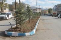 İĞDE - Muradiye'de Yeşillendirme Çalışmaları