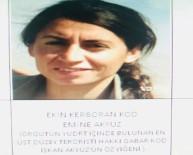 PKK - PKK'nın sözde özel güç sorumlusu öldürüldü