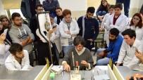DENIZ KABUĞU - Takı Sanatının Tarihten Günümüze Yolculuğu MEÜ'de Masaya Yatırıldı