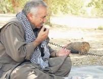 MURAT KARAYILAN - Türkiye'nin Afrin hazırlığı PKK'yı telaşlandırdı