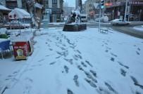 HAVA SICAKLIĞI - Kars'a Beklenen Kar Yağdı