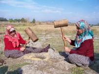 MUSTAFA TOPRAK - Hassa'da Çeltik Hasadı
