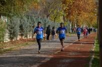 İMAM HATİP - Okullar Arası Atletizm Kros Yarışlarında Birinciler Belli Oldu